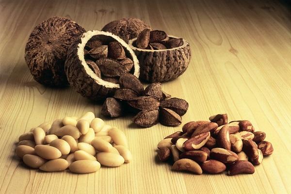 Кедровые орехи повышают иммунитет thumbnail