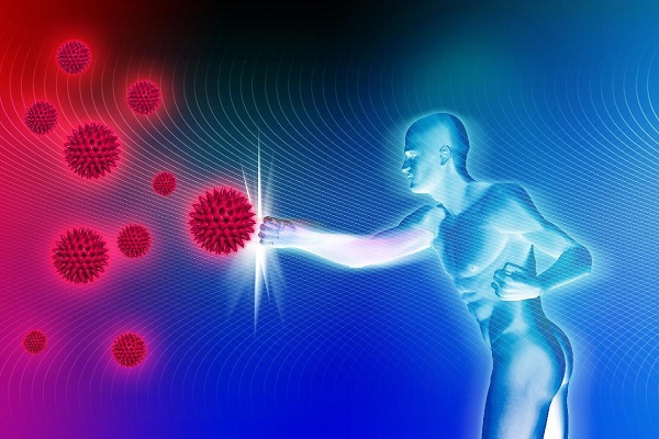 Как выглядит иммунитет?
