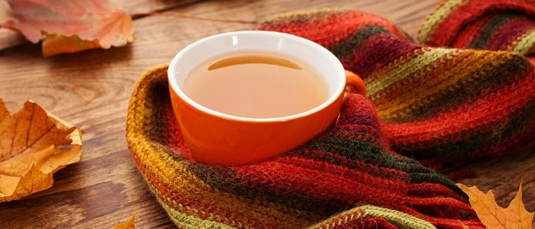 Таблетки повышающие иммунитет у взрослых при простуде