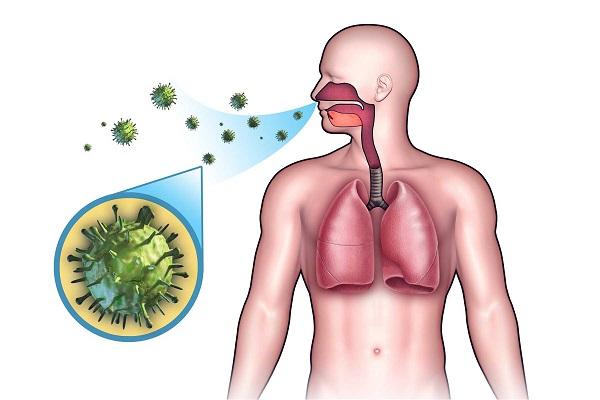 Иммунитет против туберкулеза