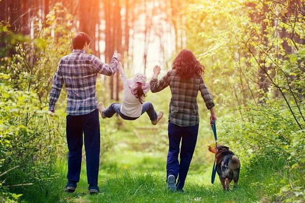 Прогулки семьи по лесу